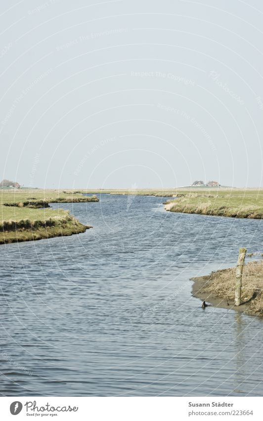 hooge Landscape Cloudless sky Hill Waves Coast River bank North Sea Small Holm Island North Sea Islands North Sea coast Break water Moss Settlement Deserted
