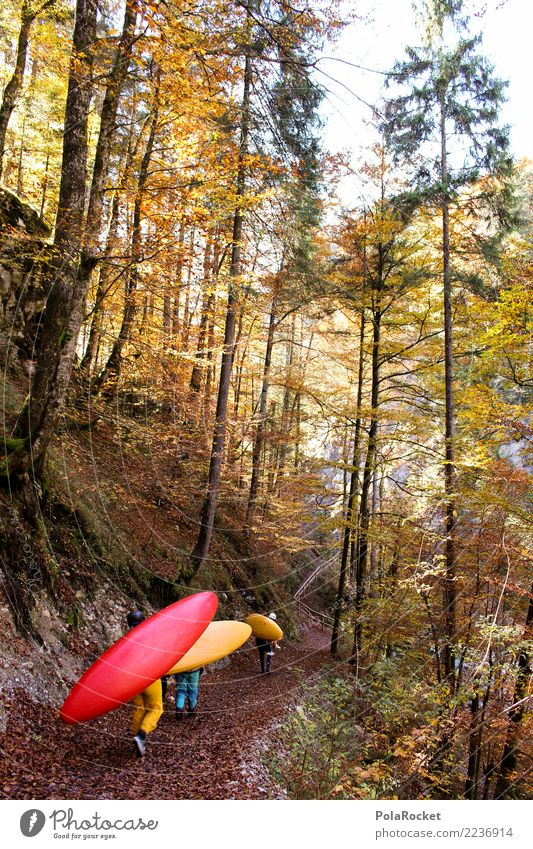#S# Kayak hiking Aquatics Hiking Nature Water Forest Autumn Sports Extreme sports Leaf Paddling Passion Anticipation Effort Yellow Red Colour photo