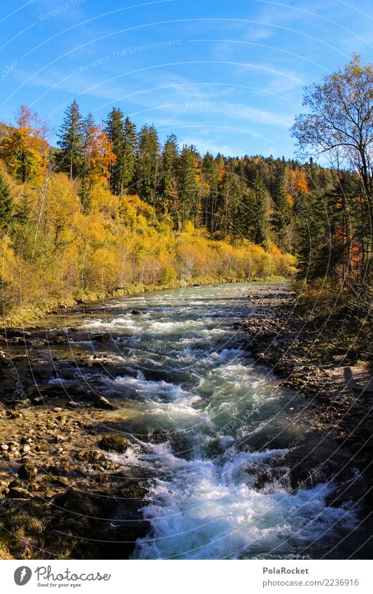 #S# White water Environment Nature Water Autumn Life Whitewater Yellow Current Stone Blue Sky Alps Waves Paddling Riverbed Clarity Colour photo Exterior shot