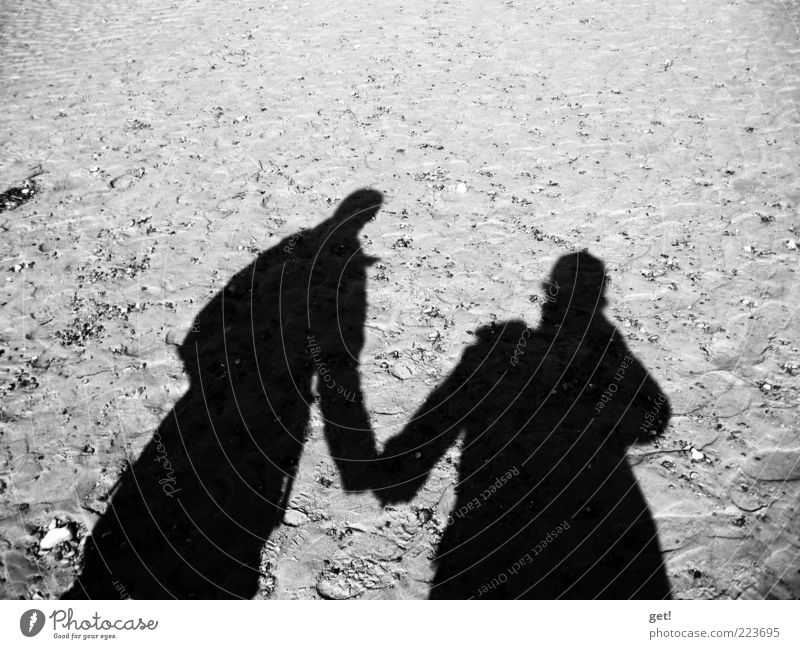 Pair Human being Couple Partner 2 Love Black & white photo Reflection Shadow Copy Space top Hold hands Sand Silhouette Lovers Together Relationship Trust