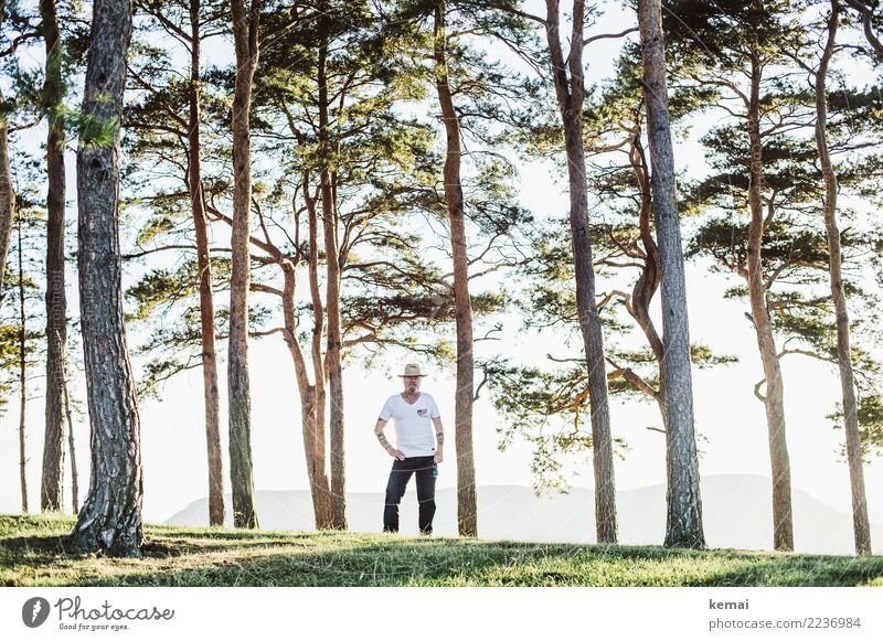 Human being Nature Man Summer Landscape Tree Relaxation Calm Adults Life Lifestyle Senior citizen Freedom Trip Leisure and hobbies Contentment