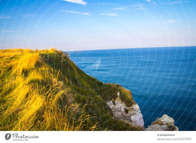 etretat North Sea Étretat France Normandie Landscape Limestone rock Ocean Autumn Nature Back-light Rock