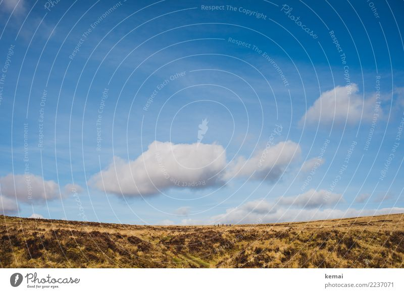 Great sky over the moor and the hiking group Lifestyle Harmonious Well-being Contentment Senses Calm Leisure and hobbies Vacation & Travel Trip Adventure