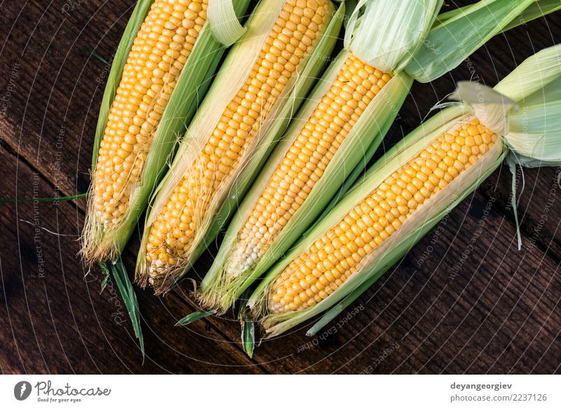 Raw corn in the garden Vegetable Nutrition Summer Garden Leaf Wood Fresh Natural Yellow Gold Green Harvest sweet background cob food healthy agriculture