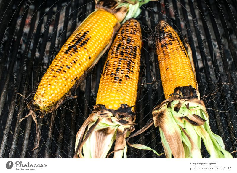 Roasted corn on the grill Vegetable Summer Fresh Hot Delicious Yellow roasted BBQ barbecue sweet food cob cooking healthy Meal picnic fire barbeque Tasty Snack