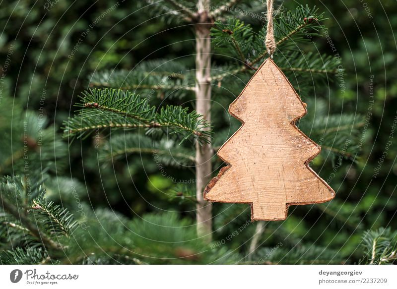 Christmas fir shape on branch Christmas & Advent Green White Tree Winter Wood Feasts & Celebrations Decoration Table New Symbols and metaphors Seasons Tradition