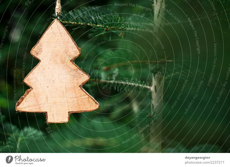 Christmas fir shape on branch Design Winter Decoration Feasts & Celebrations Christmas & Advent Nature Tree Paper Wood New Green White christmas background