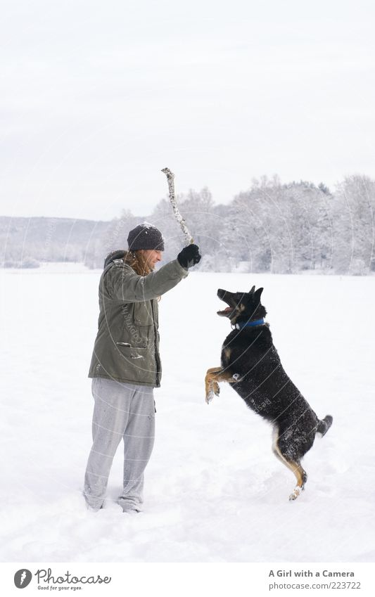 Human being Man Nature White Joy Winter Adults Black Animal Meadow Snow Playing Environment Landscape Dog Jump