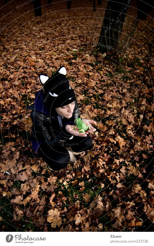 Human being Nature Youth (Young adults) Beautiful Leaf Adults Forest Environment Autumn Landscape Style Dream Sit Lifestyle 18 - 30 years To hold on