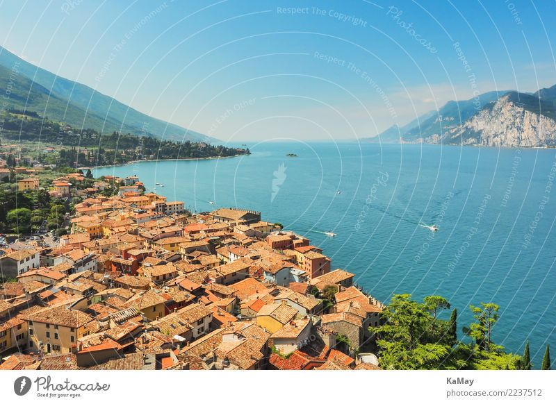 Malcesine at Lake Garda Vacation & Travel Tourism Sightseeing Summer Summer vacation Nature Landscape Water Sky Cloudless sky Sunlight Beautiful weather