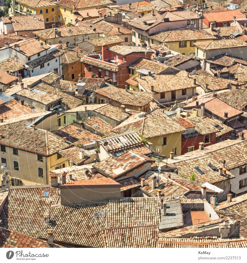 Sea of houses of Malcesine Sightseeing City trip House (Residential Structure) Italy Italian Veneto Europe Village Small Town Old town Manmade structures