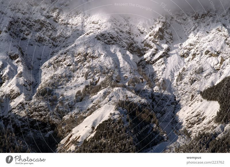 Nature Snow Mountain Landscape Environment Fog Rock Alps Beautiful weather Slope Copy Space Steep face