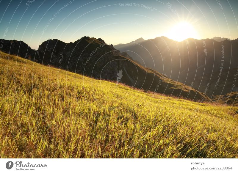morning sunshine over high alpine meadow in summer Vacation & Travel Summer Sun Mountain Hiking Nature Landscape Sunrise Sunset Beautiful weather Warmth Grass
