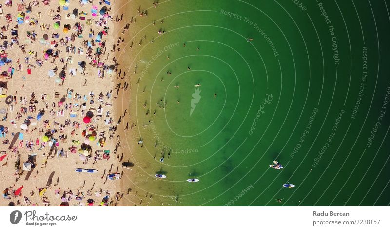 Aerial View Of People Having Fun On Beach Human being Nature Vacation & Travel Summer Water Landscape Ocean Relaxation Warmth Lifestyle Environment Coast