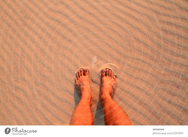stopped Lifestyle Contentment Relaxation Leisure and hobbies Vacation & Travel Tourism Freedom Summer Summer vacation Beach Human being Masculine Feet 1 Nature