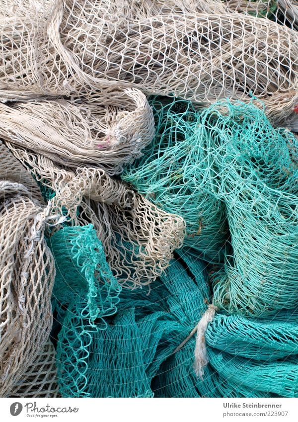 Sardinian Network II Fishery Turquoise Fishing net Navigation Fishing boat Rope Lie Firm Attachment Knot Structures and shapes Hold Dry Tradition Hollow