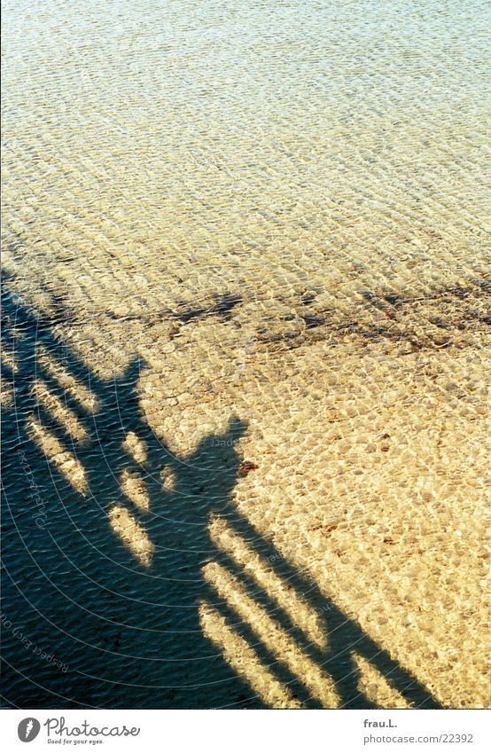 sea of shadows Ocean Man Beach Vacation & Travel Boltenhagen Sea bridge Human being Baltic Sea Couple Shadow Water Sand Sun Coast two people In pairs
