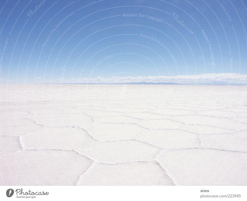 Salar de Uyuni Nature Landscape Sky Cloudless sky Salt  lake Desert Salt flats Bolivia South America Vacation & Travel Blue White Moody Uniqueness Freedom