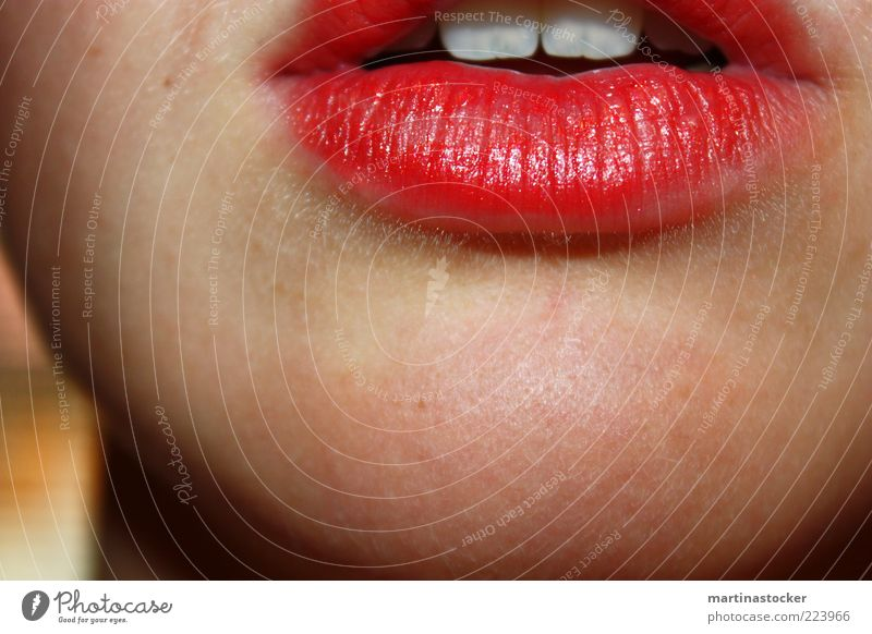 red lips one should kiss Beautiful Skin Lipstick Feminine Young woman Youth (Young adults) Woman Adults Mouth Teeth 1 Human being To talk Red White Romance Lust