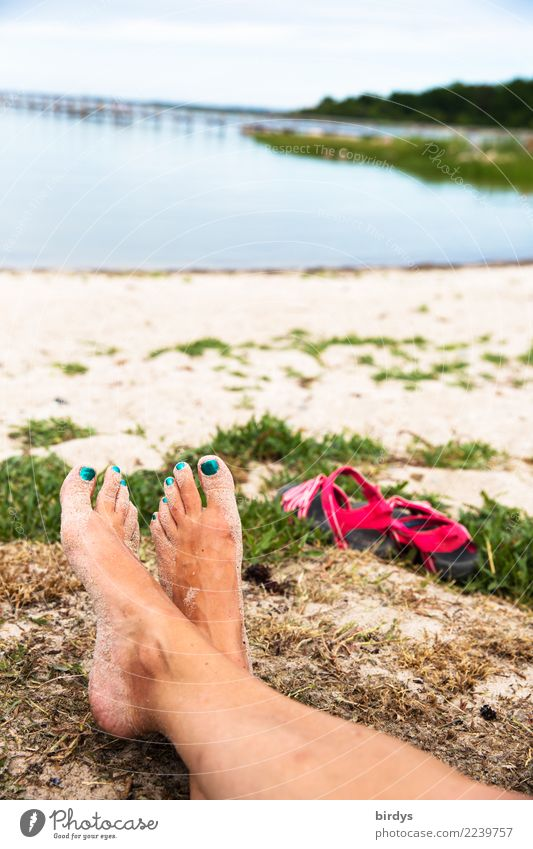 relaxed time Nail polish Relaxation Calm Summer vacation Feminine Woman Adults Feet 1 Human being 30 - 45 years Beautiful weather Coast Lakeside Beach