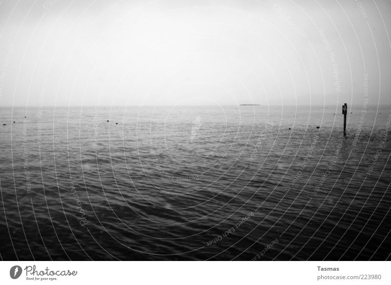 Oceans & Streams Water Bad weather Storm Fog Waves Lake Lake zurich Longing Homesickness Wanderlust Cold Calm Black & white photo Exterior shot Deserted Light