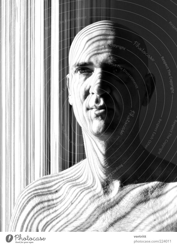 stricken Design Human being Masculine Head 1 30 - 45 years Adults Bald or shaved head Gray Black White Esthetic Barcode Visual spectacle Shadow Drape