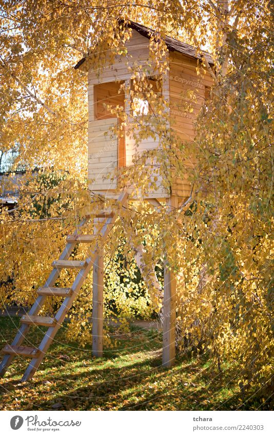 Tree house Luxury Style Design Leisure and hobbies Playing Summer House (Residential Structure) Garden Decoration Child Infancy Culture Nature Landscape Grass