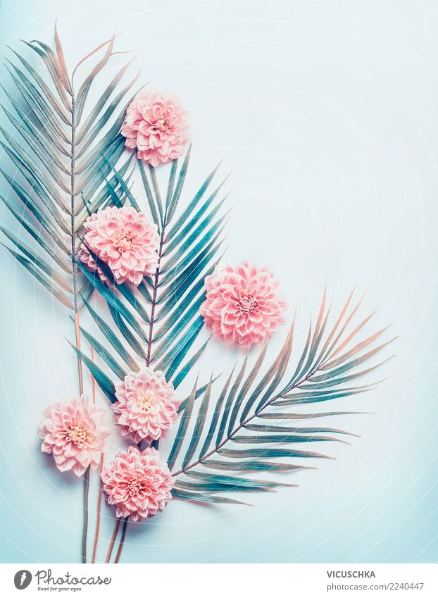 Layout with tropical palm leaves and pastel pink flowers Style Design Nature Plant Flower Leaf Blossom Hip & trendy Pink Conceptual design Background picture