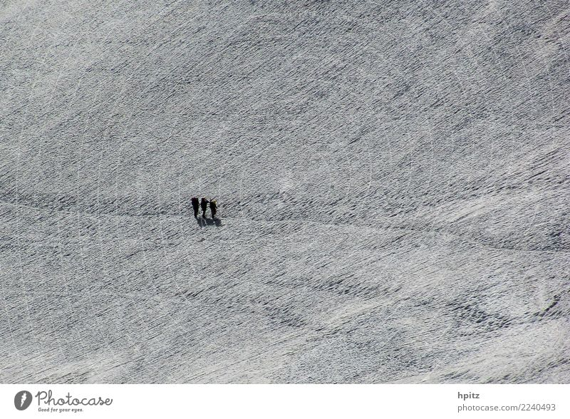 Alone in white Landscape Elements Winter Ice Frost Snow Mountain Glacier Footprint Together Cold Determination Passion Beautiful Solidarity Adventure Effort