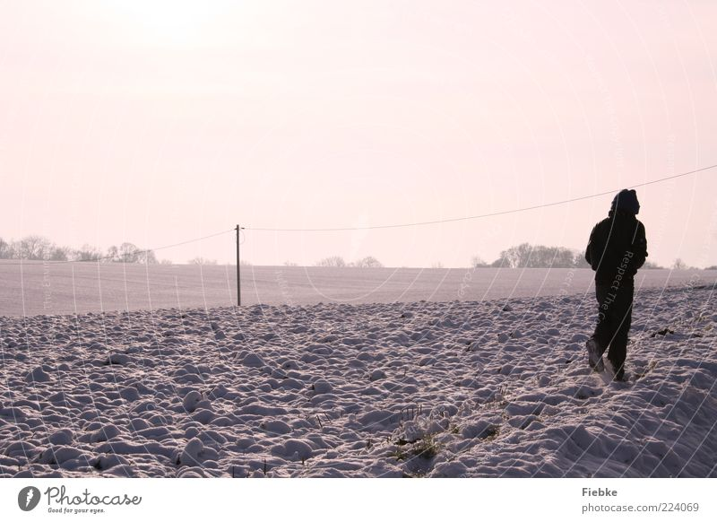 winter weather Child 1 Human being Nature Landscape Sky Winter Beautiful weather Snow Field Violet Cold To go for a walk Coat Far-off places Bright Colour photo