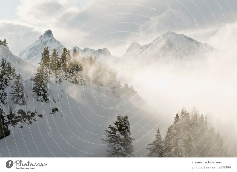 Nature Clouds Winter Snow Mountain Landscape Environment Bright Ice Fog Climate Frost Alps Peak Fir tree Winter vacation