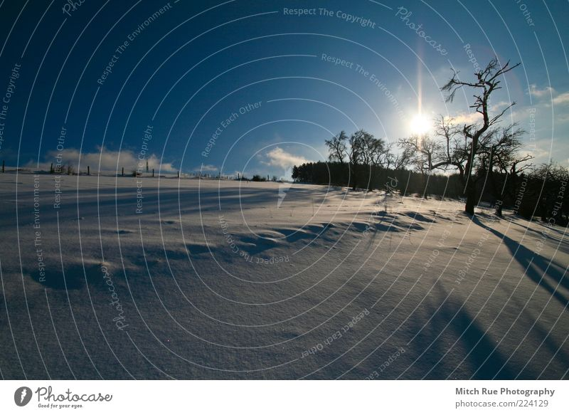 Nature Tree Sun Plant Winter Cold Snow Landscape Weather Ice Germany Horizon Europe Frost Village Snowscape