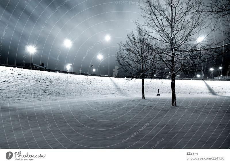 Blue City Tree Winter Dark Cold Snow Style Park Arrangement Energy Modern Esthetic Clean Lantern Street lighting