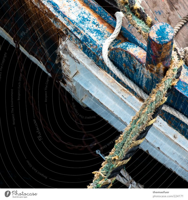 fish and ships Summer Fishing boat Rowboat Rope Wood Blue Colour Idyll Decline Colour photo Exterior shot Close-up Detail Deserted Copy Space left
