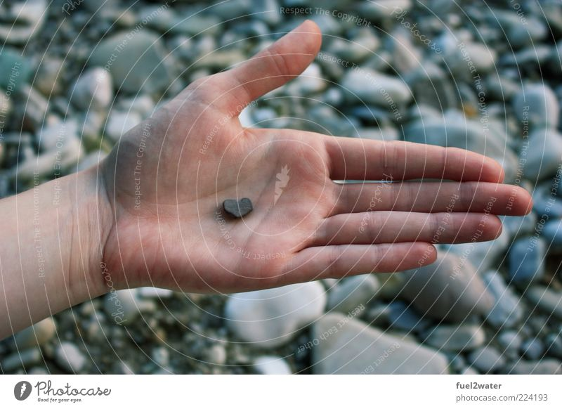 Your heart in my hand Hand Stone Esthetic Trust Safety Safety (feeling of) Agreed Sympathy Love Infatuation Romance Heart Colour photo Exterior shot Close-up