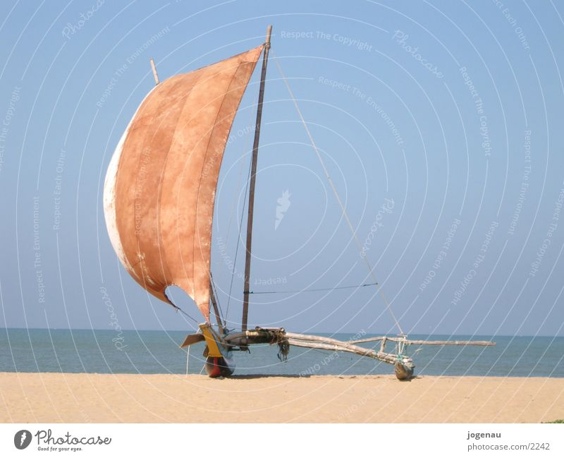 Water Sun Ocean Beach Vacation & Travel Sand Watercraft Sail Los Angeles Catamaran Sri Lanka