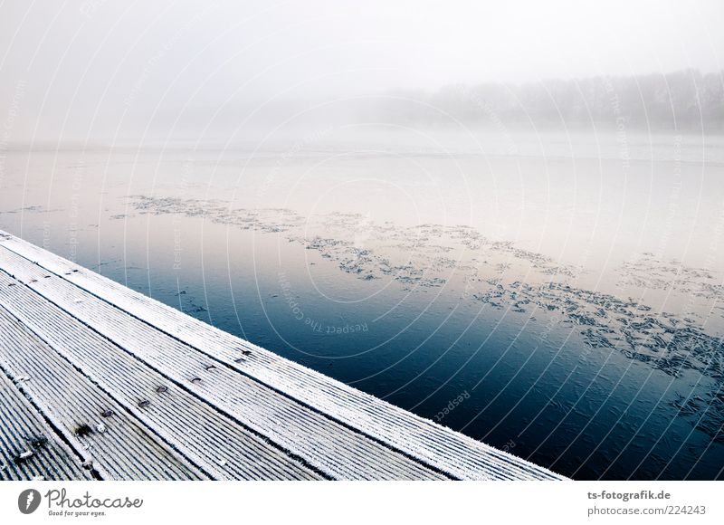 Quiet shore Environment Nature Landscape Elements Air Water Winter Fog Ice Frost Lakeside River bank Cold Blue White Footbridge Jetty Fog bank Wall of fog