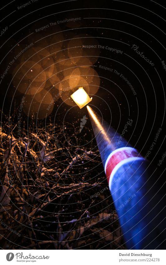 Winter romance at night Plant Tree Black Perspective Lamp Lantern Street lighting Illuminate Glittering Circle Wide angle Snowfall Snowflake Beautiful
