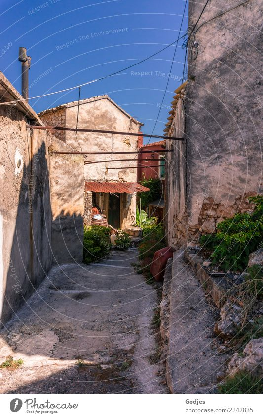 Lanes Liapades'/ Voltage Cloudless sky Summer Bushes Pot plant liapades Corfu Village Deserted House (Residential Structure) Architecture Wall (barrier)