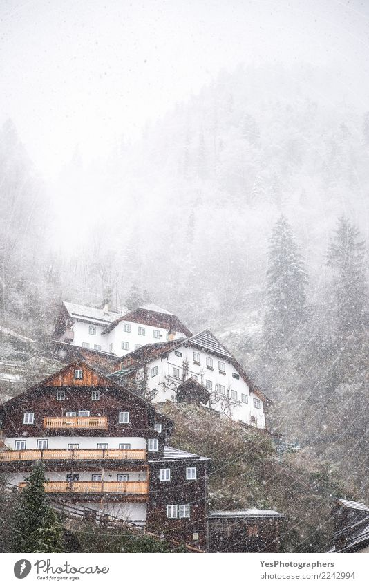 Alpine village on a snowing day Vacation & Travel Mountain House (Residential Structure) New Year's Eve Nature Weather Bad weather Storm Gale Snow Snowfall