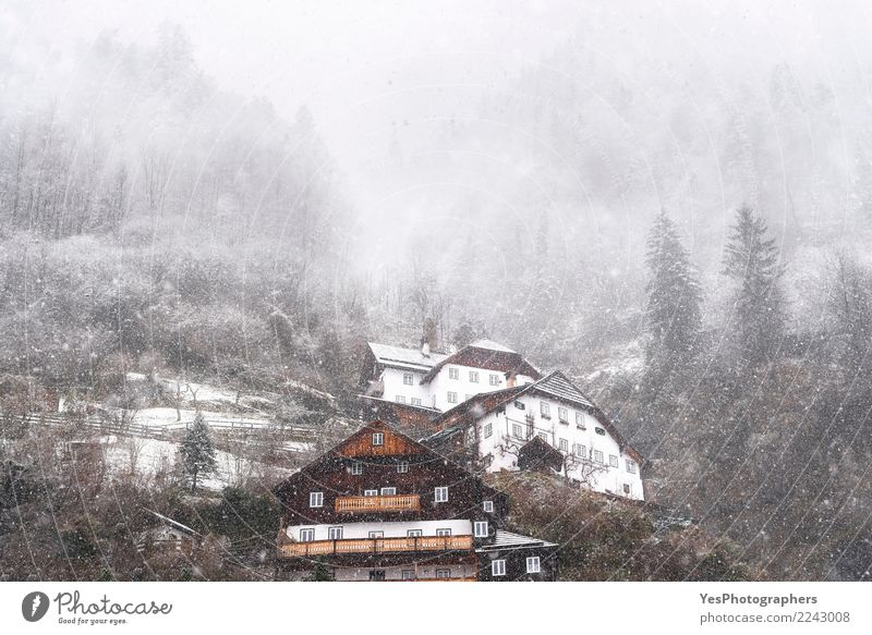 Snowfall over Austrian mountain village Vacation & Travel Mountain House (Residential Structure) New Year's Eve Weather Bad weather Storm Gale Forest Alps