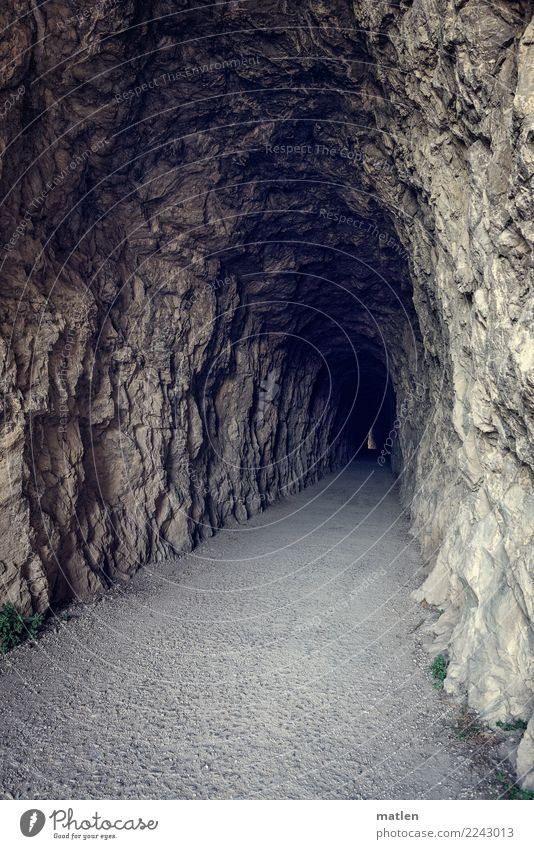 Exciting Tunnel Dark Creepy Long Brown Gray Bend Bright spot Light (Natural Phenomenon) Colour photo Subdued colour Exterior shot Deserted Copy Space left
