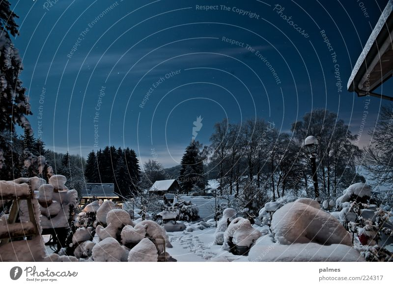 Winter time is garden time Sky Night sky Stars Snow Garden Deserted Building Roof Emotions Moody Colour photo Subdued colour Exterior shot Moonlight