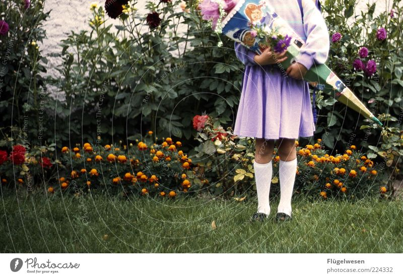 Child Plant Beautiful Flower Joy Girl Meadow Happy School Stand Study Violet Education Student Skirt Anticipation