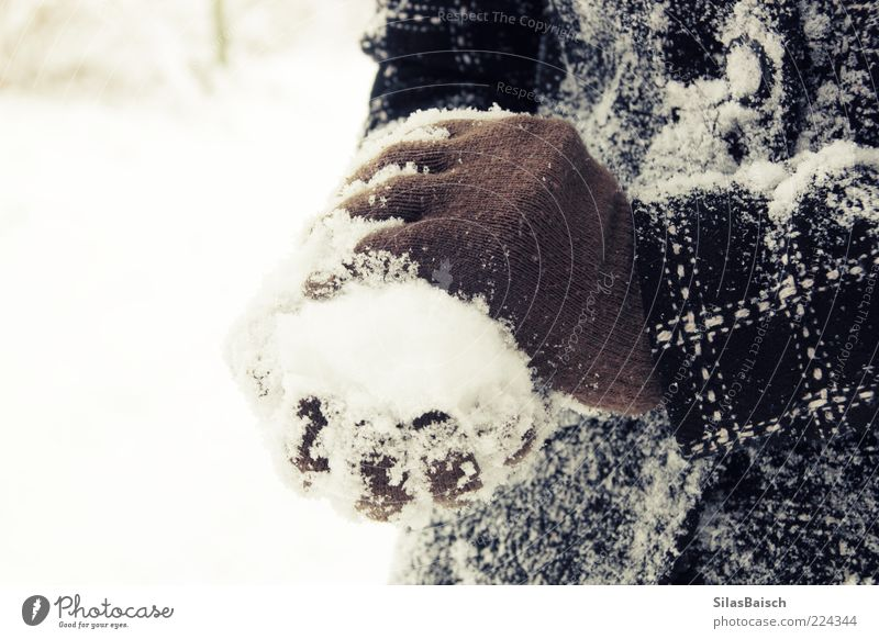 Nature White Winter Joy Black Snow Playing Brown Infancy Ice Frost Jacket Joie de vivre (Vitality) Freeze Brash Coat