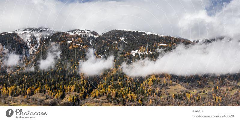 Cloudy Environment Nature Landscape Clouds Autumn Forest Hill Mountain Natural Tourism Canton Wallis Switzerland Colour photo Exterior shot Deserted Day