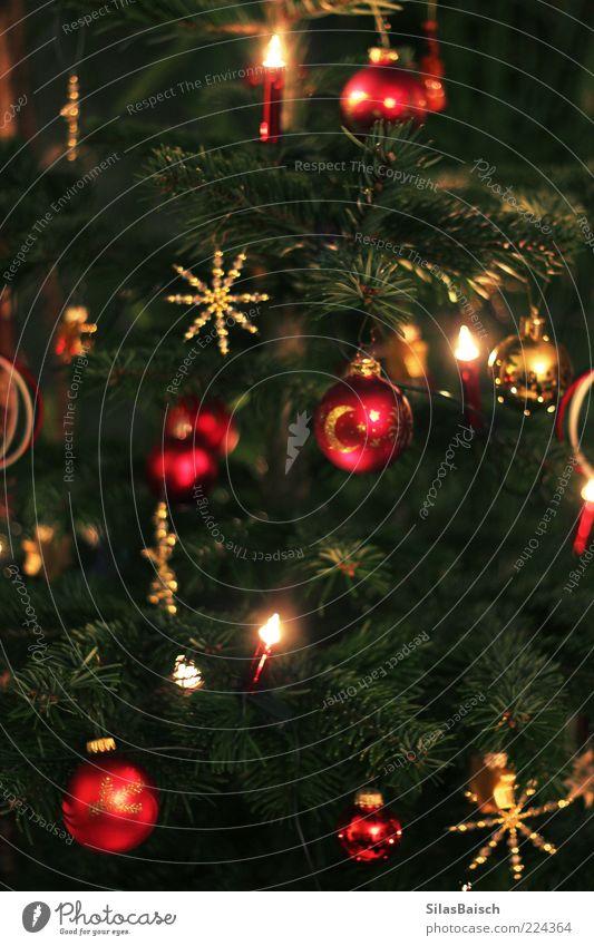Christmas & Advent Beautiful Bright Feasts & Celebrations Stars Christmas tree Illuminate Sphere Jewellery Fir tree Glitter Ball Handicraft Christmas decoration