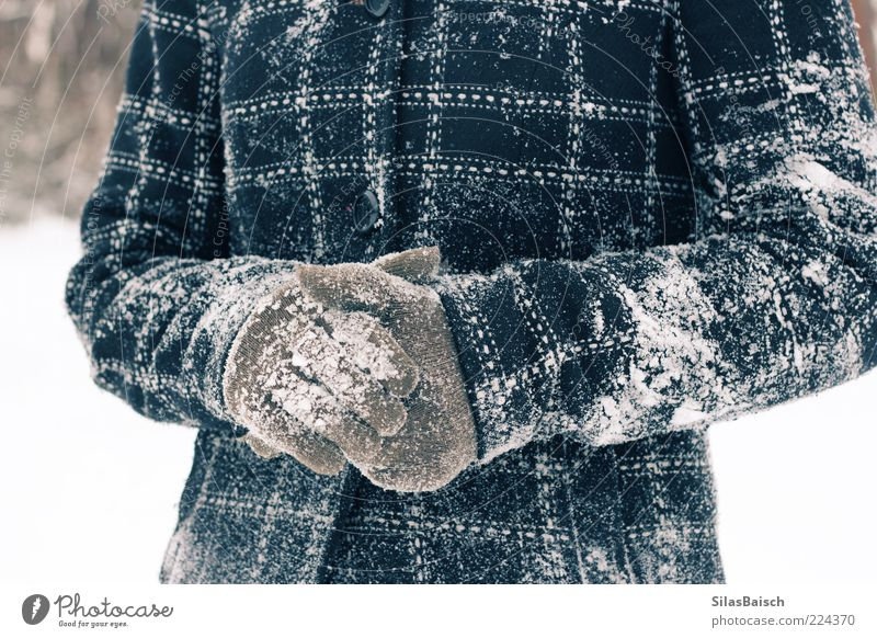 snowed in Winter Snow Coat Gloves Playing Brash Enthusiasm Snowball fight Snowscape Colour photo Copy Space top Front view Jacket Cold Stick