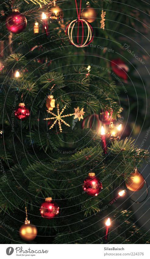 Christmas & Advent Tree Lamp Feasts & Celebrations Elegant Star (Symbol) Decoration Christmas tree Fir tree Fragrance Glitter Ball Christmas decoration