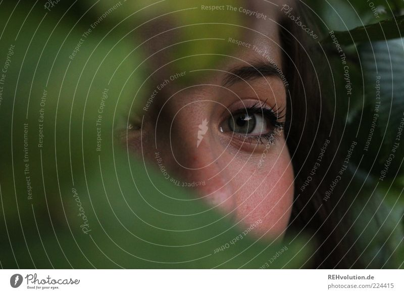 moment *for helgi* Human being Feminine Young woman Youth (Young adults) Woman Adults Eyes 1 18 - 30 years Looking Hiding place Mysterious Observe Make-up